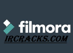Wondershare Filmora 9.5.1.8 Crack
